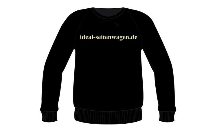 sweatshirt-rear